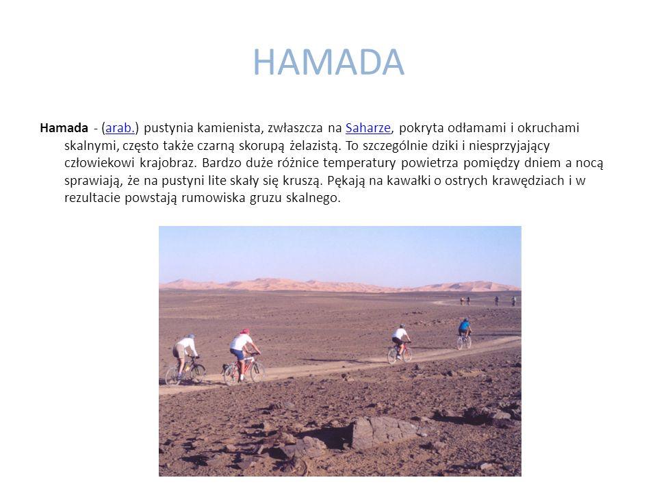 HAMADA Hamada - (arab.) pustynia kamienista, zwłaszcza na Saharze, pokryta odłamami i okruchami skalnymi, często także czarną skorupą żelazistą.