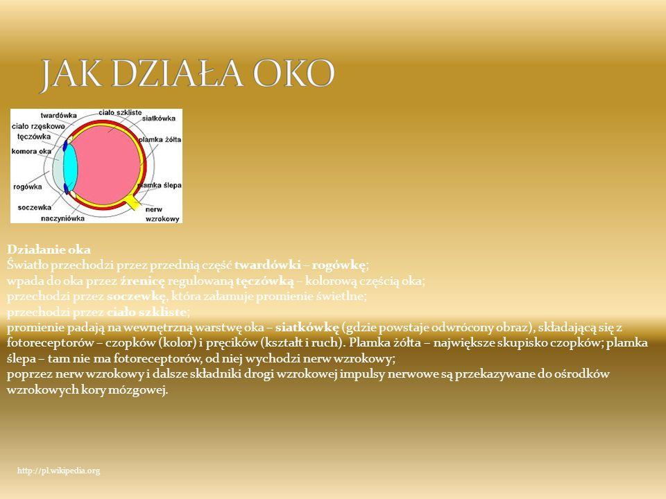 1 Daltonizm 1 Daltonizm 2 Astygmatyzm (niezborność rogówkowa) 2 Astygmatyzm (niezborność rogówkowa) 3Nadwzroczność 4Krótkowzroczność 5AMD - zwyrodnienie plamki związane z wiekiem