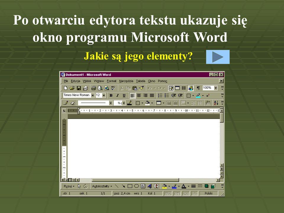 Paski przewijania Obszar roboczy Pasek tytułowy Pasek menu Pasek formatowania Pasek narzędzi Linijka Pasek narzędzi rysowania