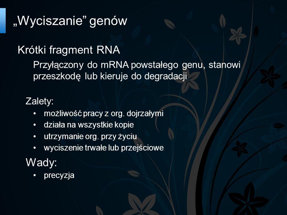 Krótki fragment RNA Przyłączony do mRNA powstałego genu, stanowi przeszkodę lub kieruje do degradacji Zalety: możliwość pracy z org.