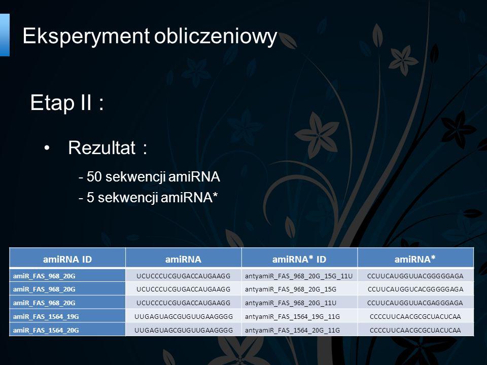 Etap II : Rezultat : - 50 sekwencji amiRNA - 5 sekwencji amiRNA* Eksperyment obliczeniowy amiRNA IDamiRNAamiRNA* IDamiRNA* amiR_FAS_968_20GUCUCCCUCGUGACCAUGAAGGantyamiR_FAS_968_20G_15G_11UCCUUCAUGGUUACGGGGGAGA amiR_FAS_968_20GUCUCCCUCGUGACCAUGAAGGantyamiR_FAS_968_20G_15GCCUUCAUGGUCACGGGGGAGA amiR_FAS_968_20GUCUCCCUCGUGACCAUGAAGGantyamiR_FAS_968_20G_11UCCUUCAUGGUUACGAGGGAGA amiR_FAS_1564_19GUUGAGUAGCGUGUUGAAGGGGantyamiR_FAS_1564_19G_11GCCCCUUCAACGCGCUACUCAA amiR_FAS_1564_20GUUGAGUAGCGUGUUGAAGGGGantyamiR_FAS_1564_20G_11GCCCCUUCAACGCGCUACUCAA