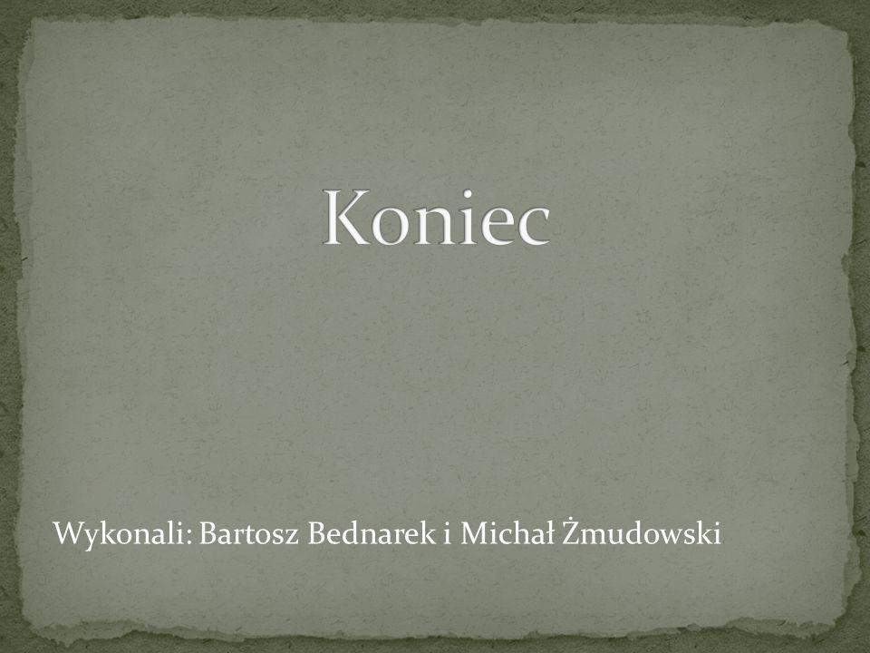 Wykonali: Bartosz Bednarek i Michał Żmudowski