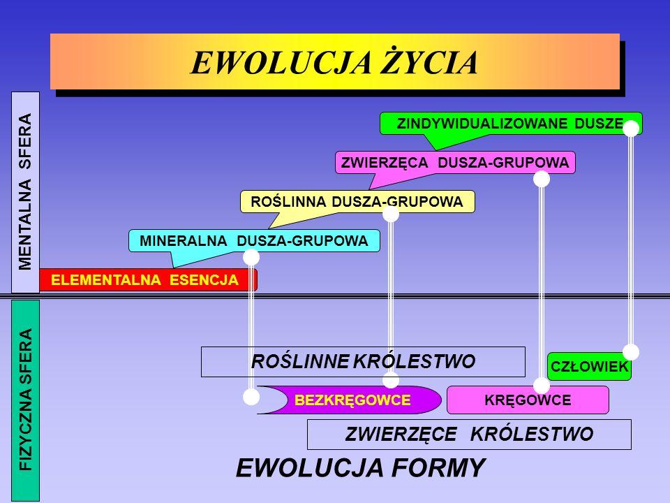 FIZYCZNE (STHÛLA) ETERYCZNE (PRÂNAMAYA) ASTRALNO-MENTALNE (KÂMA) PRZYCZYNOWE (KÂRANA) JAŹŃ (ÂTMA -- BUDDHI -- MANAS) MONADA (TURIYÂTMA) OSOBOWOŚĆ Budowa istoty ludzkiej - ciała