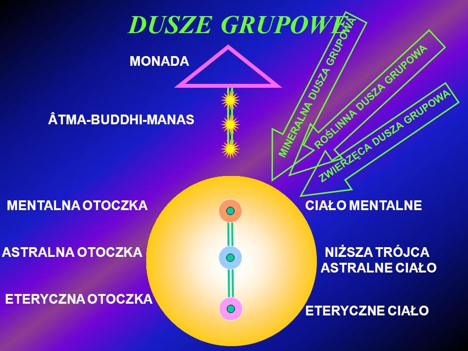 DUSZE GRUPOWE MONADA ÂTMA-BUDDHI-MANAS NIŻSZA TRÓJCA MENTALNA OTOCZKA ASTRALNA OTOCZKA ETERYCZNA OTOCZKA ETERYCZNE CIAŁO ASTRALNE CIAŁO CIAŁO MENTALNE