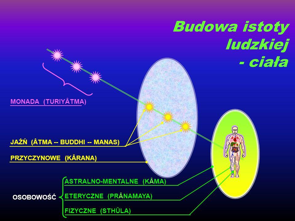 FIZYCZNE (STHÛLA) ETERYCZNE (PRÂNAMAYA) ASTRALNO-MENTALNE (KÂMA) PRZYCZYNOWE (KÂRANA) JAŹŃ (ÂTMA -- BUDDHI -- MANAS) MONADA (TURIYÂTMA) OSOBOWOŚĆ Budo