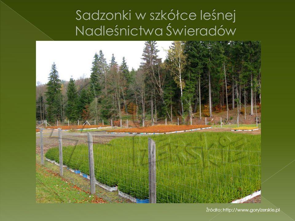 Źródło: http://www.goryizerskie.pl