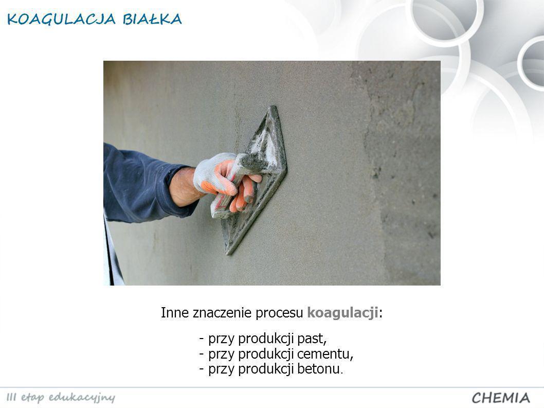 Inne znaczenie procesu koagulacji: - przy produkcj i past, - przy produkcj i cementu, - przy produkcj i betonu.