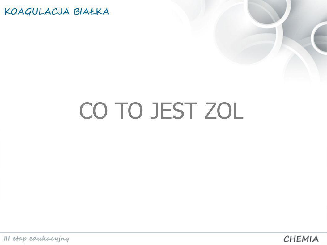 CO TO JEST ZOL