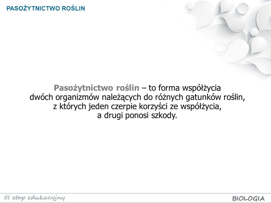PASOŻYTNICTWO ROŚLIN Jemioła pospolita (Viscum album) jest półpasożytem – syntezuje substancje odżywcze, natomiast wodę i sole mineralne podbiera od drzewa-żywiciela.