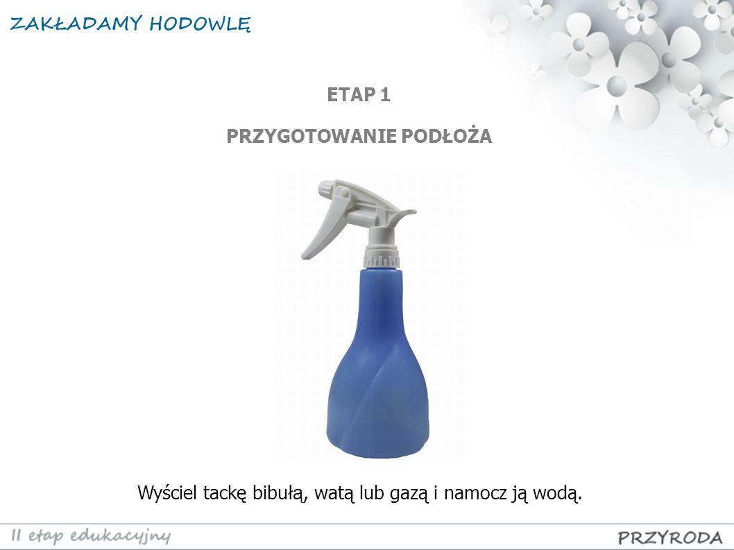 Wyściel tackę bibuł ą, watą lub gazą i namocz ją wodą. ETAP 1 PRZYGOTOWANIE PODŁOŻA