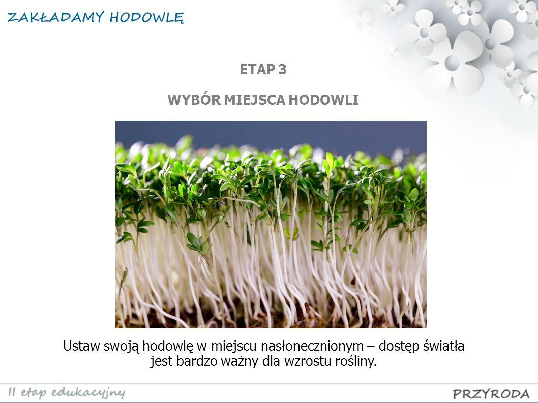 Ustaw swoją hodowlę w miejscu nasłonecznionym – dostęp światła jest bardzo ważny dla wzrostu rośliny. ETAP 3 WYBÓR MIEJSCA HODOWLI
