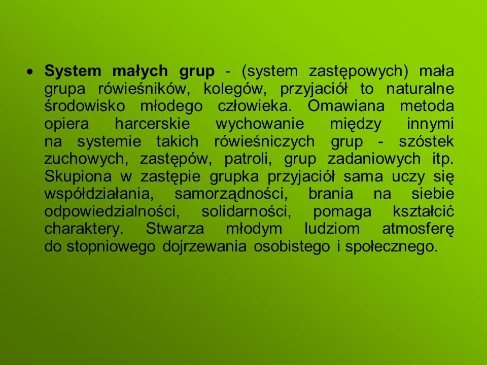 System małych grup - (system zastępowych) mała grupa rówieśników, kolegów, przyjaciół to naturalne środowisko młodego człowieka. Omawiana metoda opier