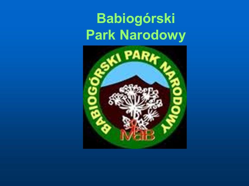 Zwierzęta Babiogórskiego Parku Narodowego
