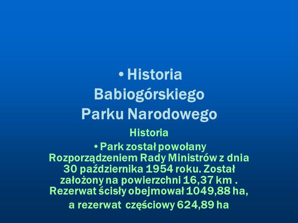 Historia Babiogórskiego Parku Narodowego Historia Park został powołany Rozporządzeniem Rady Ministrów z dnia 30 października 1954 roku. Został założon