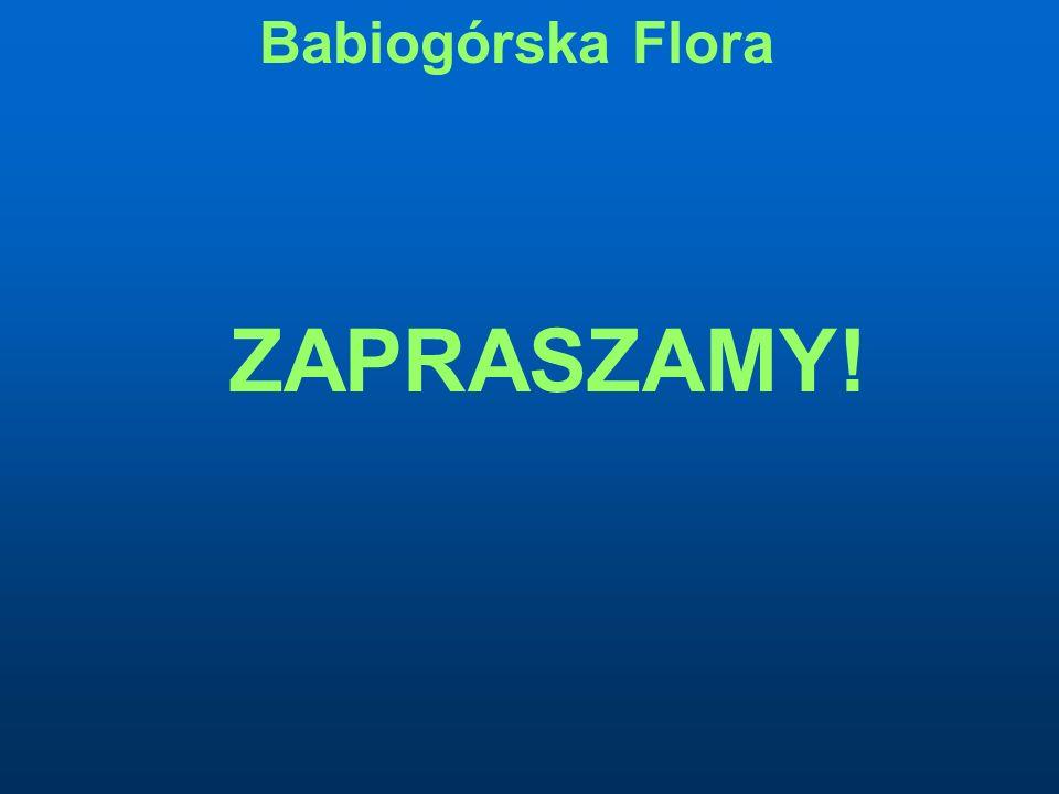 Babiogórska Flora ZAPRASZAMY!