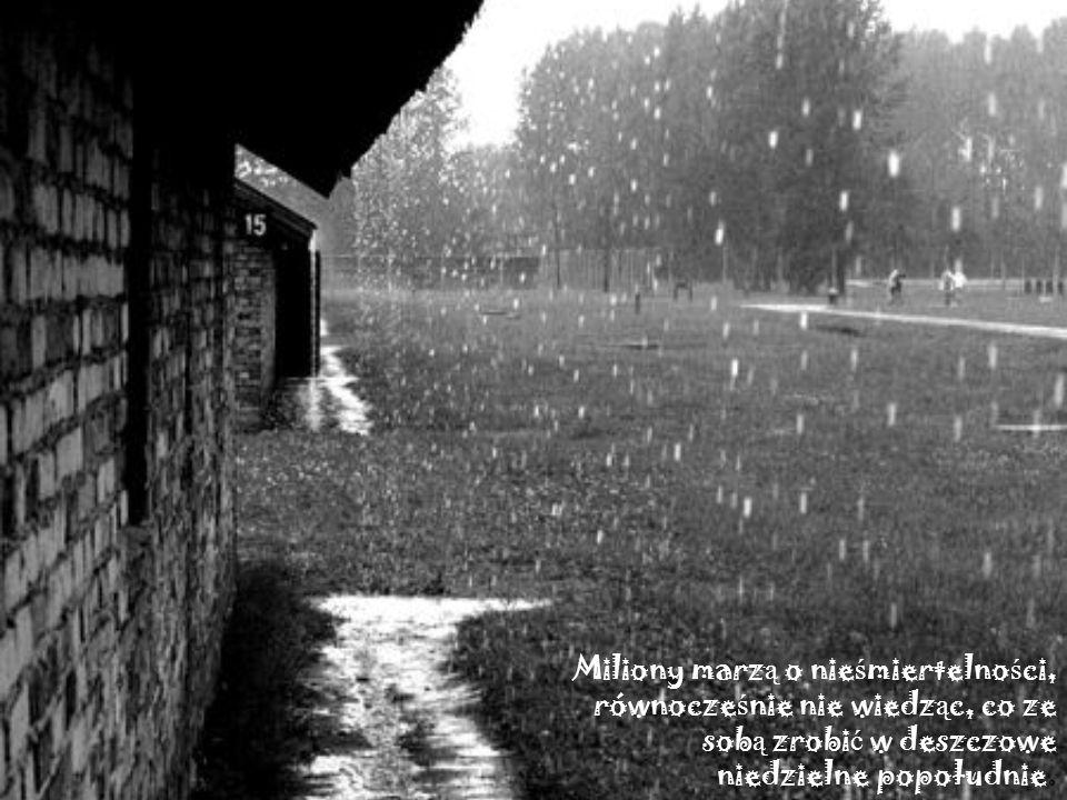 Miliony marz ą o nie ś miertelno ś ci, równocze ś nie nie wiedz ą c, co ze sob ą zrobi ć w deszczowe niedzielne popołudnie.