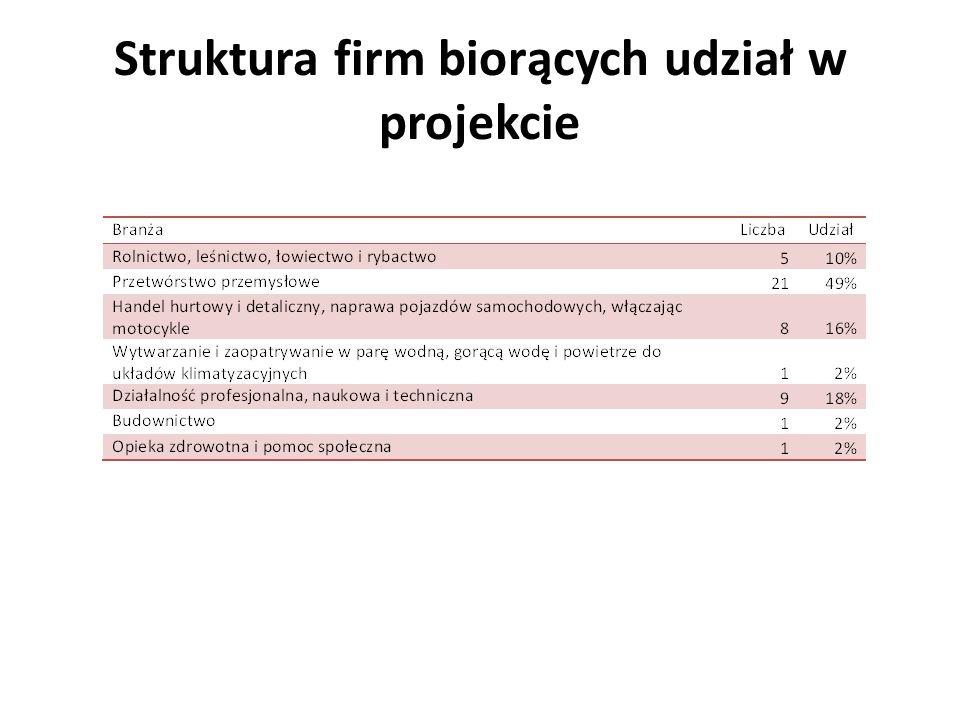 Struktura firm biorących udział w projekcie