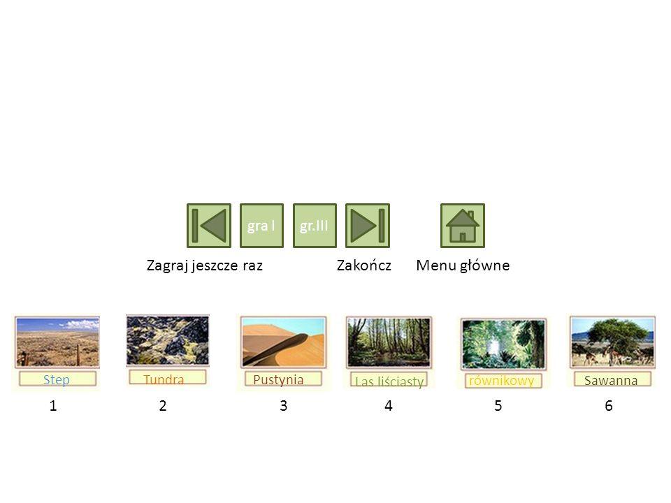 214365 Las liściasty równikowySawanna TundraStepPustynia Zagraj jeszcze razZakończMenu główne gra Igr.III
