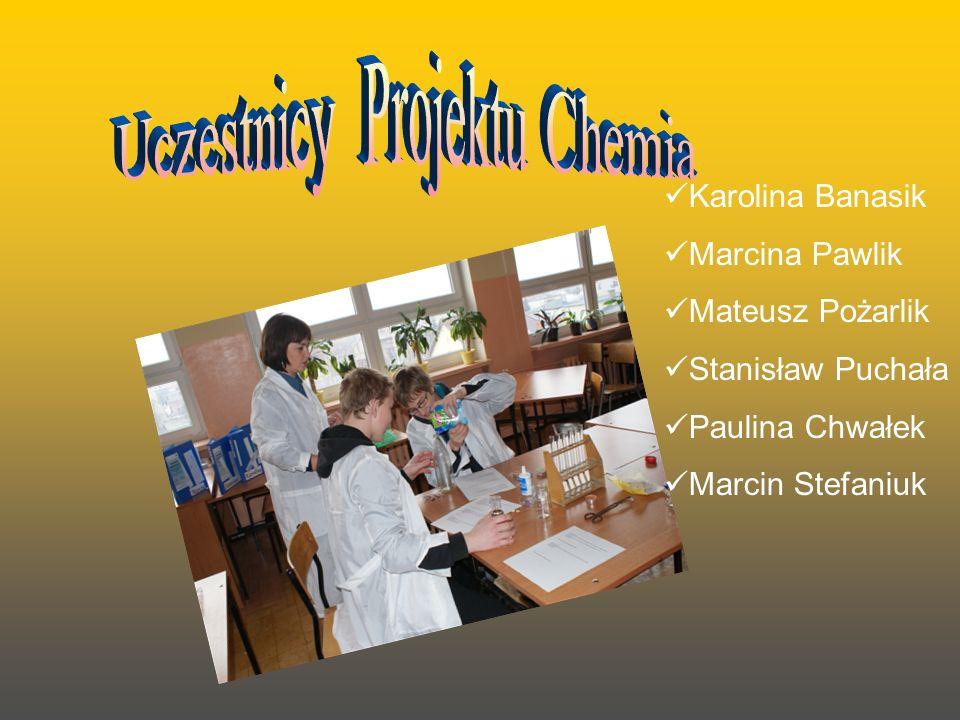 Karolina Banasik Marcina Pawlik Mateusz Pożarlik Stanisław Puchała Paulina Chwałek Marcin Stefaniuk