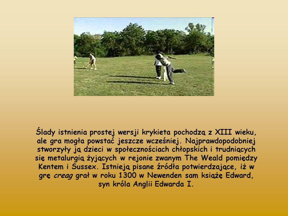 Mecze krykietowe rozgrywane są na trawiastym boisku o zbliżonym do owalnego kształcie, w środku którego znajduje się płaski pas długości 20,12 m.