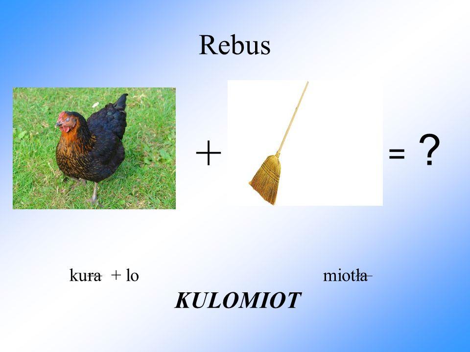 Rebus + kura + lo miotła KULOMIOT = ?