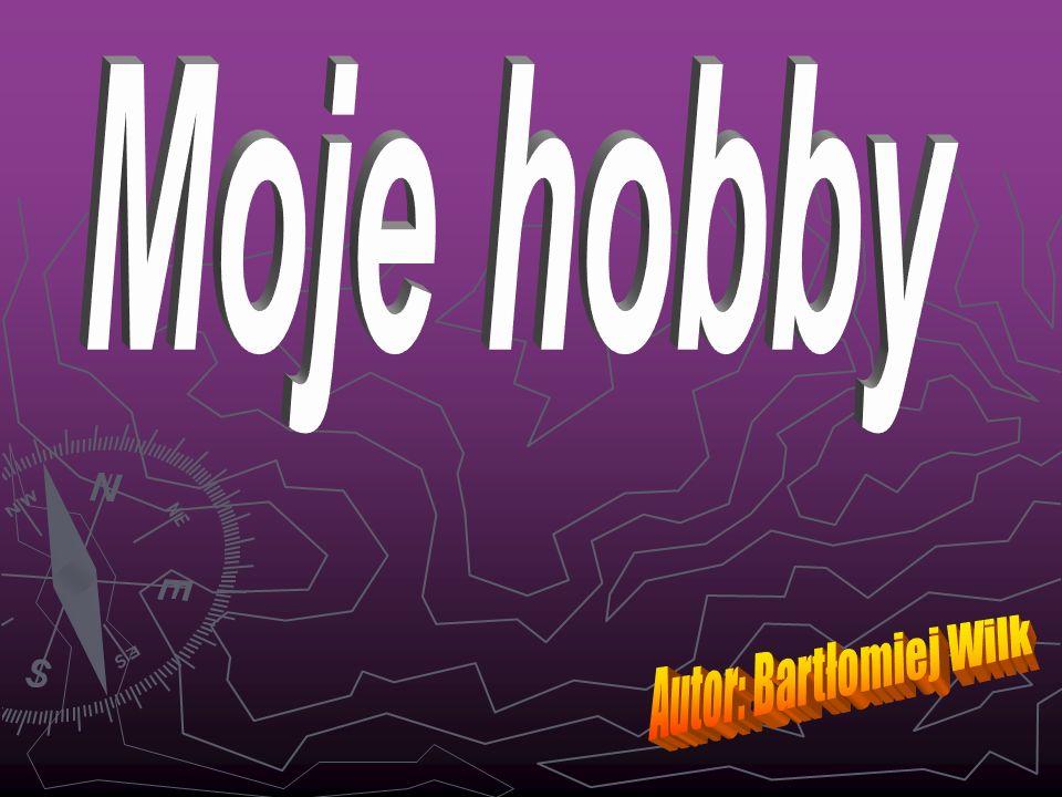 Gry komputerowe Moim hobby są gry komputerowe.Lubię grać on-line z moimi przyjaciółmi.