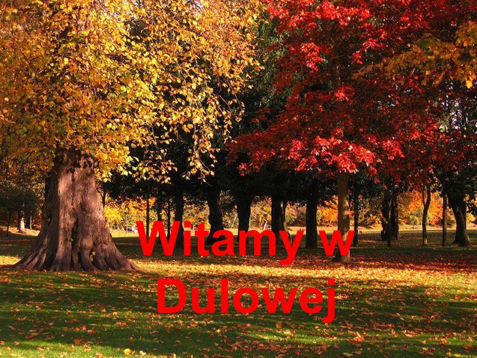 Witamy w Dulowej