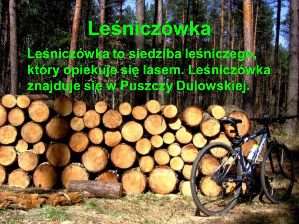 Leśniczówka Leśniczówka to siedziba leśniczego, który opiekuje się lasem. Leśniczówka znajduje się w Puszczy Dulowskiej.
