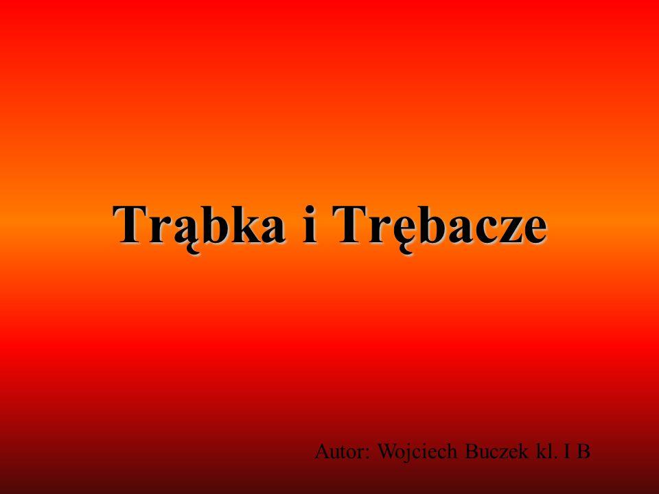 Trąbka i Trębacze Autor: Wojciech Buczek kl. I B