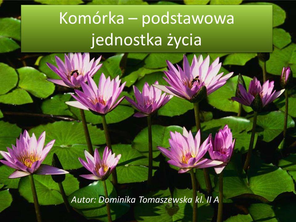Komórka – podstawowa jednostka życia Autor: Dominika Tomaszewska kl. II A