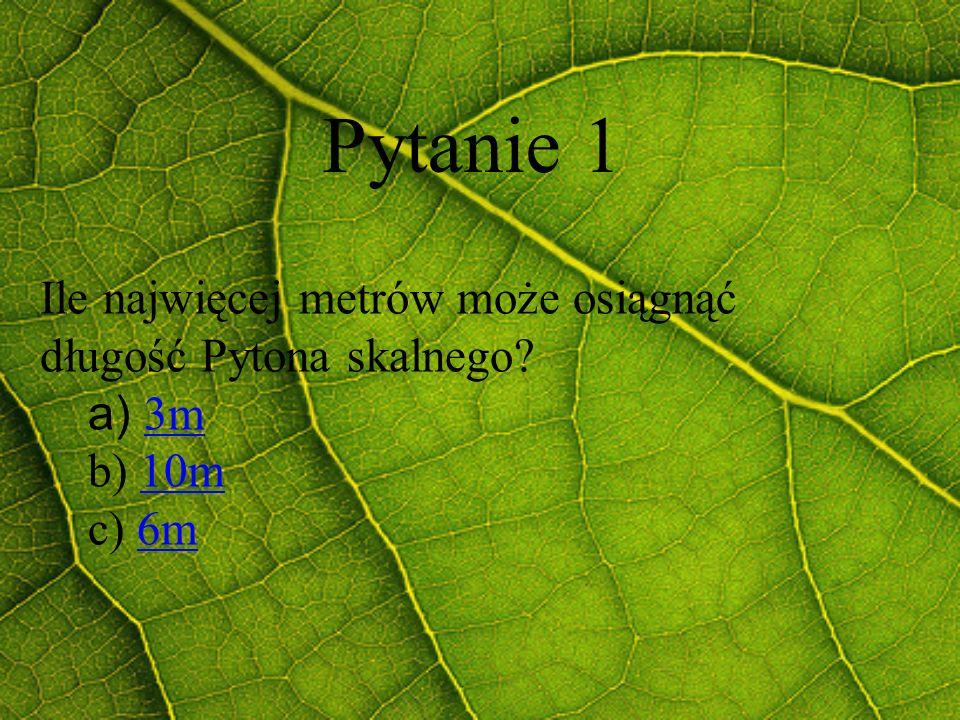 Pytanie 1 Ile najwięcej metrów może osiągnąć długość Pytona skalnego? a) 3m3m b) 10m10m c) 6m6m