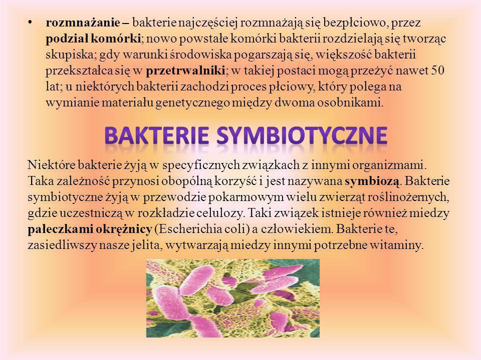 rozmnażanie – bakterie najczęściej rozmnażają się bezpłciowo, przez podział komórki; nowo powstałe komórki bakterii rozdzielają się tworząc skupiska; gdy warunki środowiska pogarszają się, większość bakterii przekształca się w przetrwalniki; w takiej postaci mogą przeżyć nawet 50 lat; u niektórych bakterii zachodzi proces płciowy, który polega na wymianie materiału genetycznego między dwoma osobnikami.