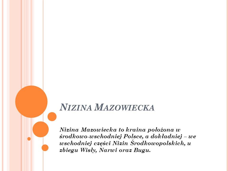 N IZINA M AZOWIECKA Nizina Mazowiecka to kraina położona w środkowo-wschodniej Polsce, a dokładniej – we wschodniej części Nizin Środkowopolskich, u z