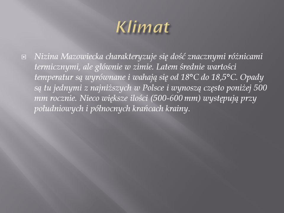 Nizina Mazowiecka charakteryzuje się dość znacznymi różnicami termicznymi, ale głównie w zimie. Latem średnie wartości temperatur są wyrównane i wahaj