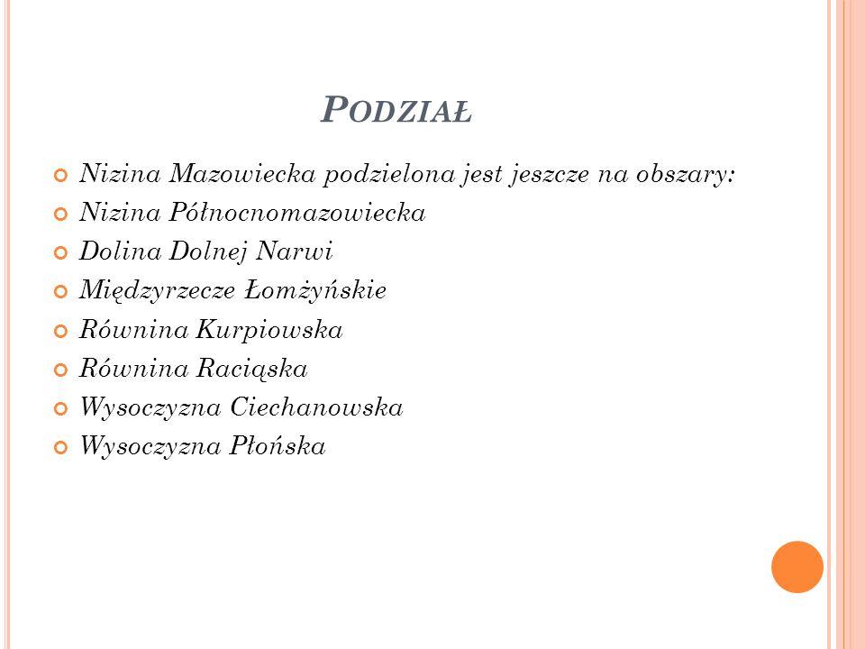 P ODZIAŁ Nizina Mazowiecka podzielona jest jeszcze na obszary: Nizina Północnomazowiecka Dolina Dolnej Narwi Międzyrzecze Łomżyńskie Równina Kurpiowsk