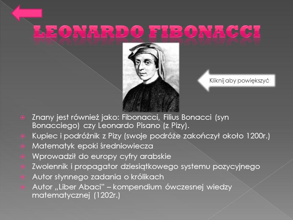 Znany jest również jako: Fibonacci, Filius Bonacci (syn Bonacciego) czy Leonardo Pisano (z Pizy). Kupiec i podróżnik z Pizy (swoje podróże zakończył o