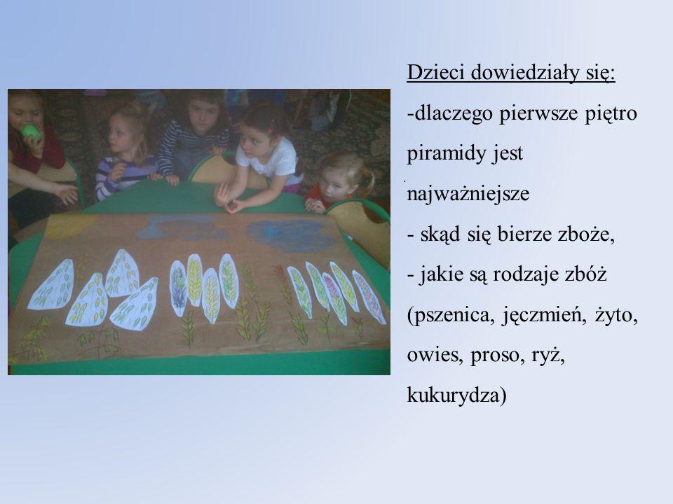 . Dzieci dowiedziały się: -dlaczego pierwsze piętro piramidy jest najważniejsze - skąd się bierze zboże, - jakie są rodzaje zbóż (pszenica, jęczmień,