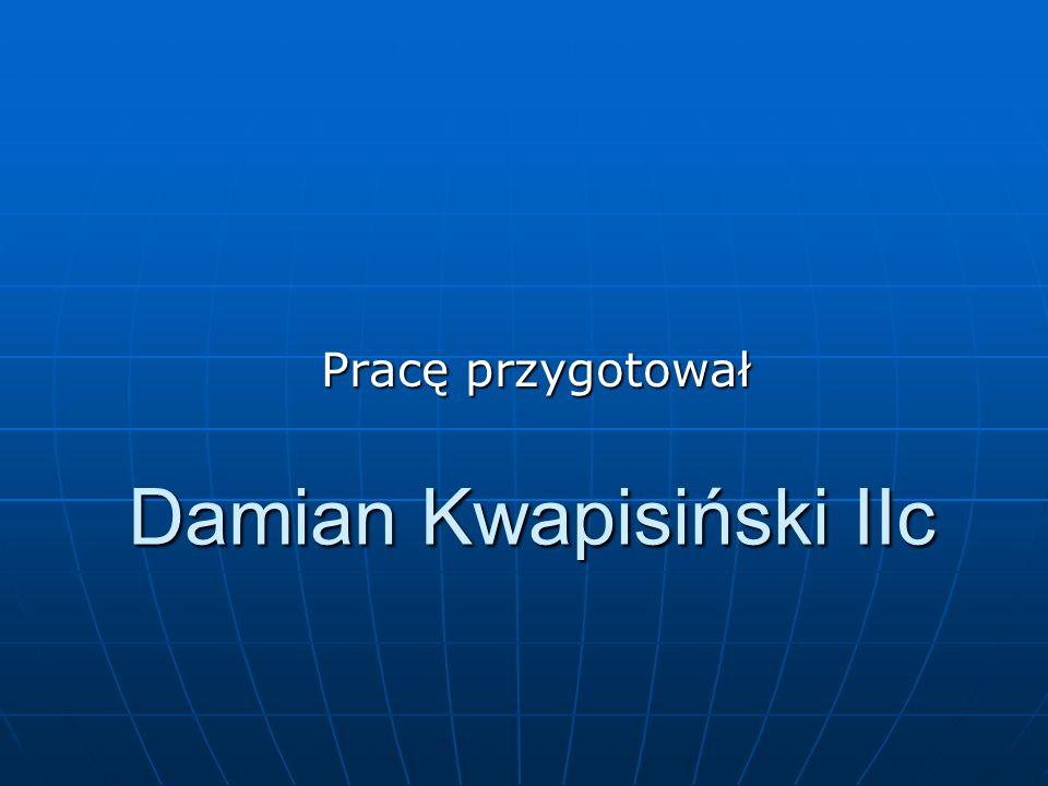 Damian Kwapisiński IIc Pracę przygotował