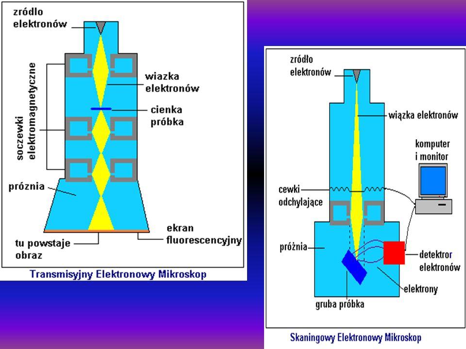 Oprócz mikroskopu elektronowego naukowcy stworzyli wiele innych skomplikowanych przyrządów służących do podglądania świata w skali mikro.
