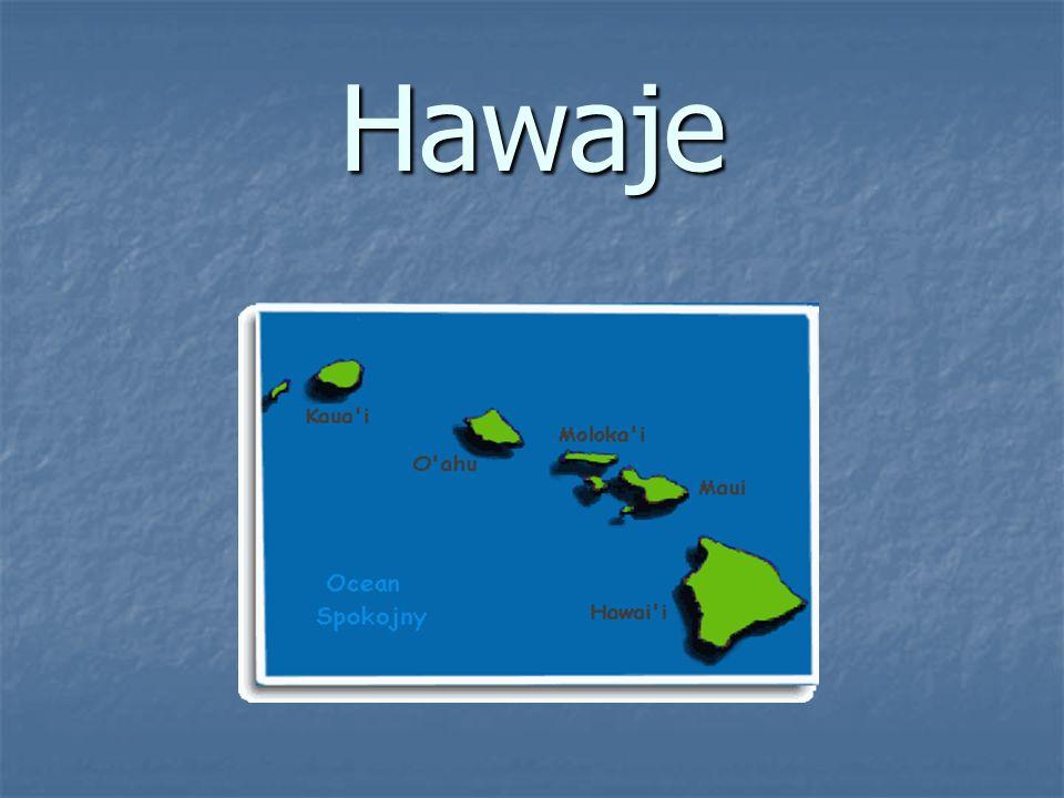 RODZAJE POTRAW: RODZAJE POTRAW: Kotlet hawajski Kotlet hawajski Grzanki hawajskie (czarna oliwka) Grzanki hawajskie (czarna oliwka) Tosty hawajskie (czarna oliwka) Tosty hawajskie (czarna oliwka) Hawajskie bułki edyta Hawajskie bułki edyta