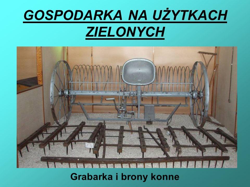 GOSPODARKA NA UŻYTKACH ZIELONYCH Grabarka i brony konne