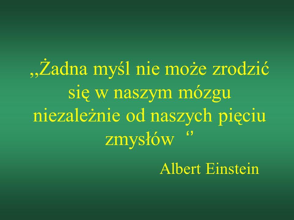 ,,Żadna myśl nie może zrodzić się w naszym mózgu niezależnie od naszych pięciu zmysłów Albert Einstein