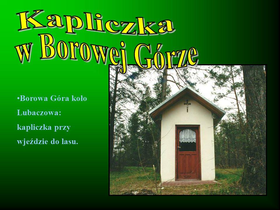 Borowa Góra koło Lubaczowa: kapliczka przy wjeździe do lasu.