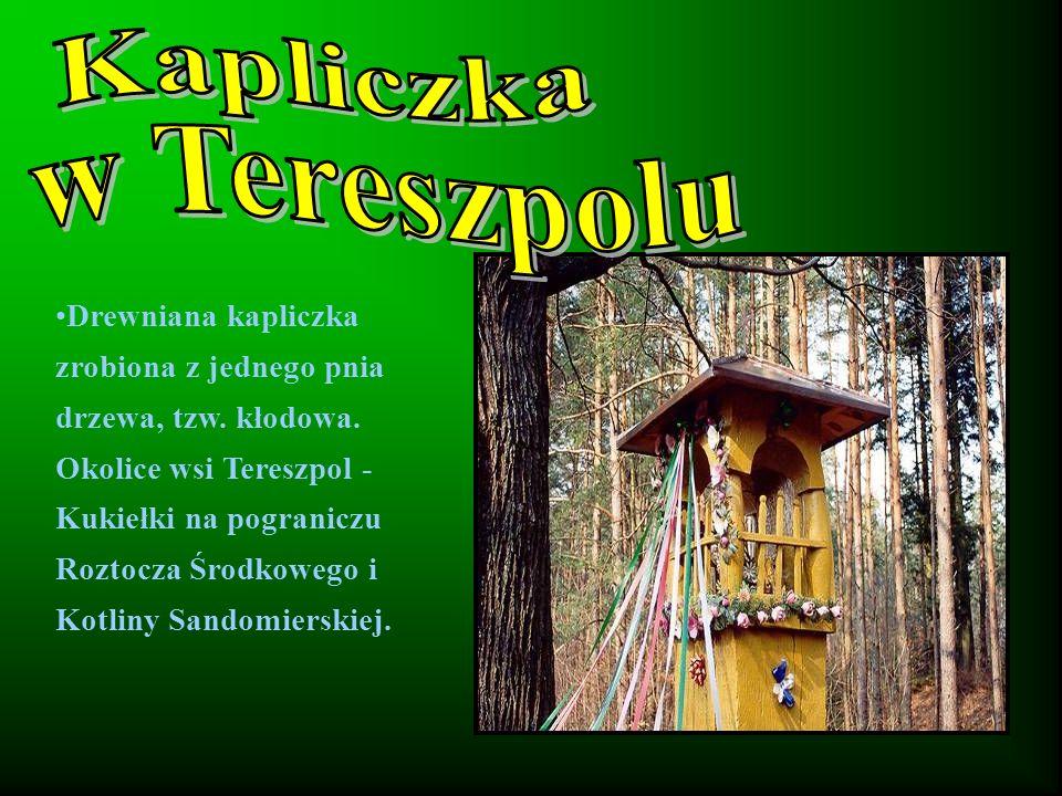 Drewniana kapliczka zrobiona z jednego pnia drzewa, tzw.