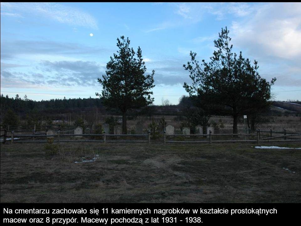Na cmentarzu zachowało się 11 kamiennych nagrobków w kształcie prostokątnych macew oraz 8 przypór. Macewy pochodzą z lat 1931 - 1938.