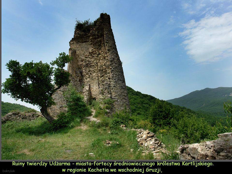 Daktylek Kachetia - Wąwóz Pankisi okolice wsi Omalo