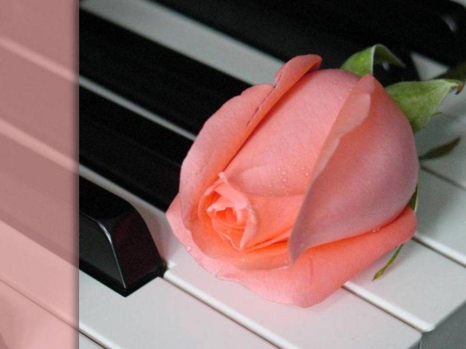 Mały kwiat tę melodię wciąż gram, ciągle czytam twój wiersz, lecz sam, wciąż sam.