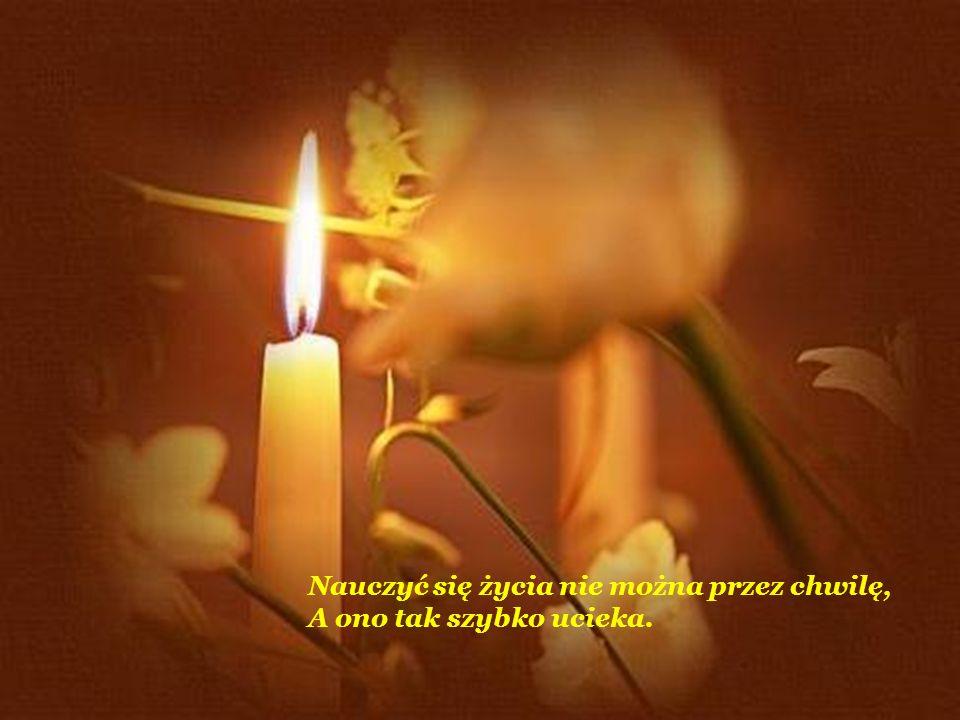 Cóż warte jest życie bez prawdy o życiu, Bez wiary w wartości człowieka.