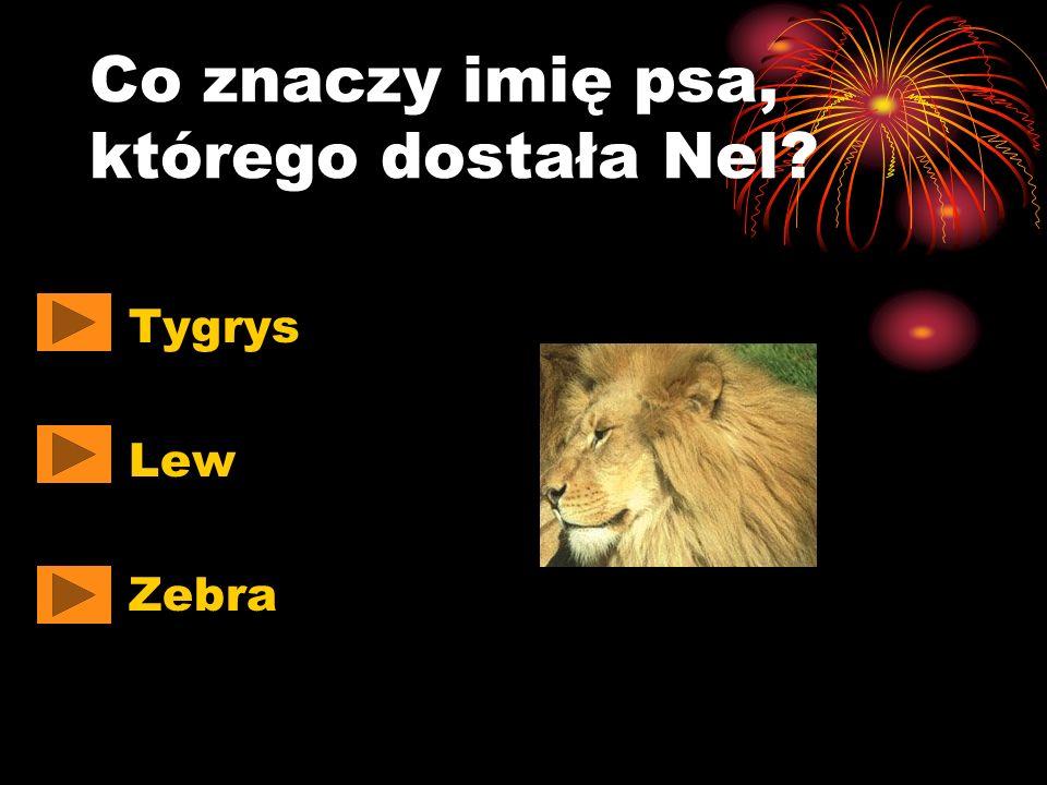 Co znaczy imię psa, którego dostała Nel? Tygrys Lew Zebra