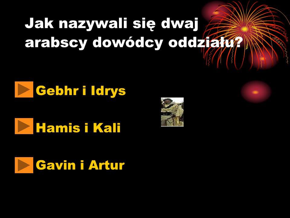 Jak nazywali się dwaj arabscy dowódcy oddziału? Gebhr i Idrys Hamis i Kali Gavin i Artur